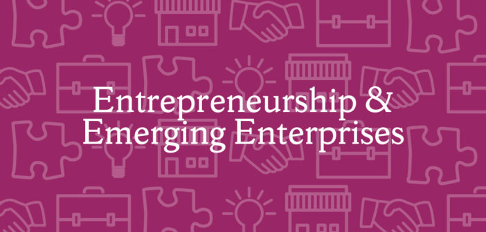 Entrepreneurship and Emerging Enterprises