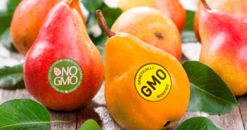 Pears with GMO labels